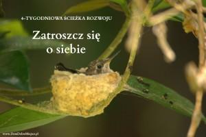 4-TYGODNIE-zatroszcz-się-o-siebie_MamySie.pl